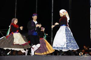 Agrupación Folklórica Danzar